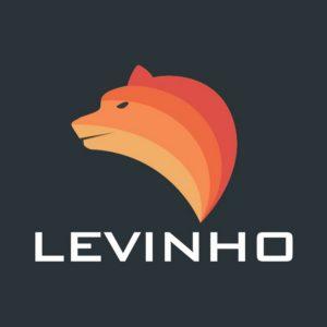 Levinho biography